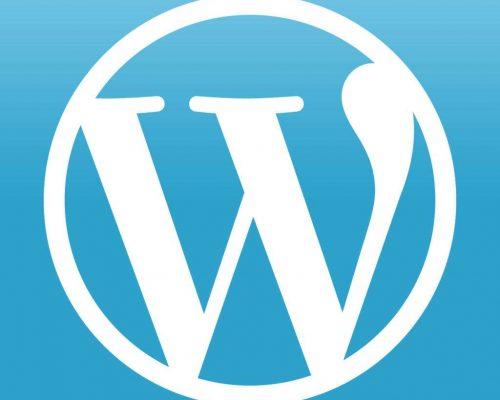 WordPress主题框架options-framework取消过滤不能使用script代码-盒子萌